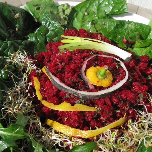 Râpé de betterave rouge et radis noir aux algues sur lit d'épinards et roquette
