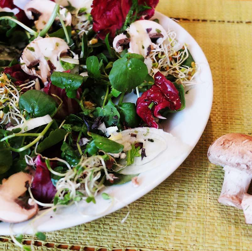 Salade rouge et verte, fenouil et champignons