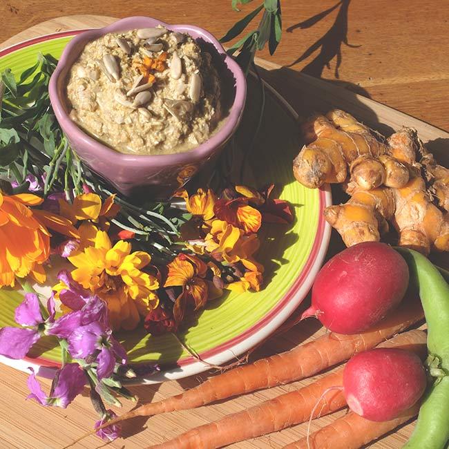 Sauce trempette aux graines de tournesol germées et au curcuma